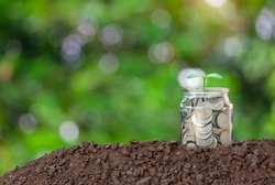 A glass jar with full coins and plant growing on top with soil to show concept saving money, land and house, education for child and investment isolated on light bokeh background.