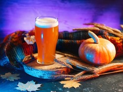 A glass of craft beer pumpkin ale. Neon backlit background . Ripe pumpkin, rye ears, knitted scarf, autumn decor. Beer for Oktoberfest or Thanksgiving