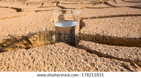 A glass of water on a parched soil during drought and dry season.