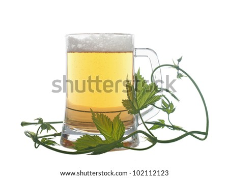 A glass with beer and a hops  isolated on a white background - stock photo