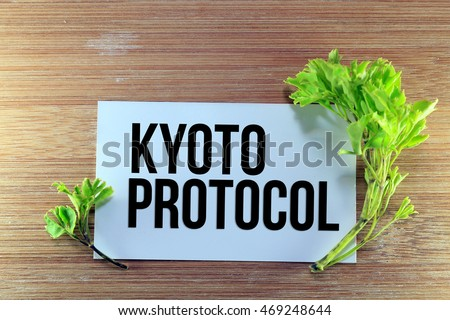 A go green concept image with a green small plant on a wooden background and a white canvas with a word KYOTO PROTOCOL Stok fotoğraf ©