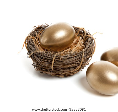 A golden egg in a birds nest on a white background