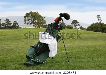 A golf bag with gold clubs on a beautiful golf course