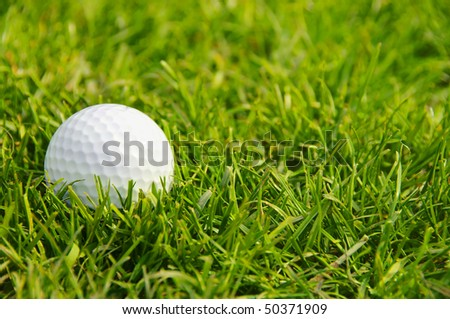A golf ball in short green grass