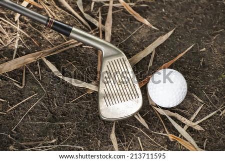 A golf ball on the ground