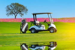 A Golf cart and golf clubs bag with shadow reflection on green grass beautiful Cosmos flowers field  and big tree with blue sky back ground