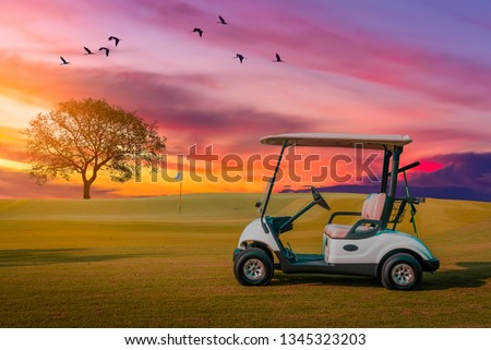 A Golf cart parking on green grass at golf course with big tree , big bird crown and twilight sky background