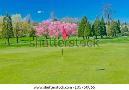 A golf course with the red flag and blossomed cherry at the background