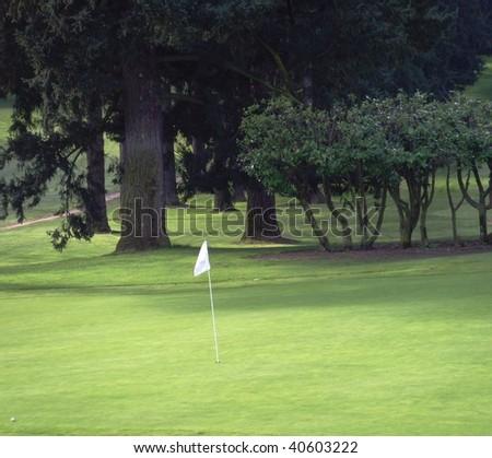A golf hole with a flag. - stock photo