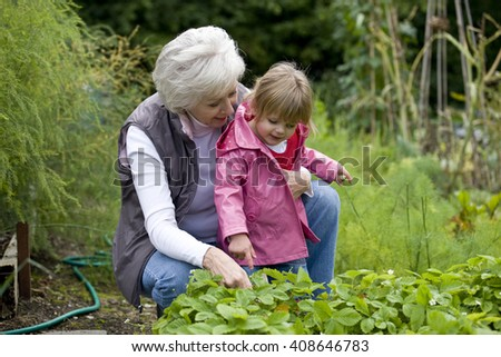 A grandmother and her granddaughter looking at strawberry plants