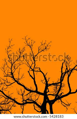 A graphic rendition of an old, gnarled tree in Halloween colors.