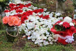 A grave site decorated with a Floral Grave Blanket made of fresh white rose petals and red gerbera flowers. Also surrounding the grave are vases of flowers. Symbolising sorrow and grief.
