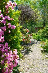 A gravel path in a romantic cottage garden in spring