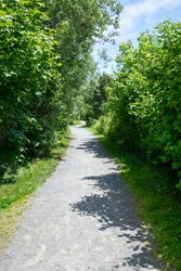 A gravel stone footpath through a small park with a vibrant green grass lawn and tall trees on both sides of the park trail.  The evergreen trees are casting shadows across the narrow walking path.