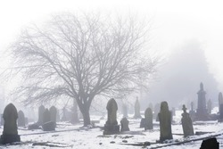 A graveyard in the fog, Gravestones and ghostly tree silhouette are visible against a background of white mist and snow.