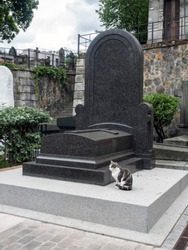 A gray and white cat sits near a gravesite in a cemetery, as though keeping guard.