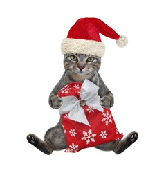 A gray cat in a red Santa Claus hat sits with a Christmas sack. White background. Isolated.