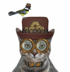A gray cat steampunk is in a hat, a metal bow tie and glasses. White background. Isolated.