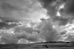 A grayscale shot of a landscape with bushes under dark storm clouds
