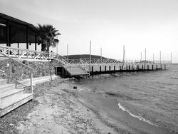 A grayscale shot of the seashore