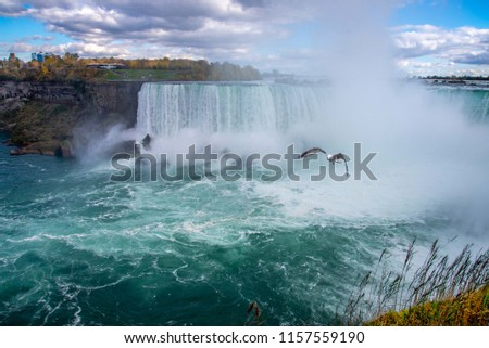 A great Niagara fall  pic with a flying sea gull. This awesome panorama looks even more hypnotising on account of the seagull flying nonchalantly over the rough waters below. fall foliage looks lovely