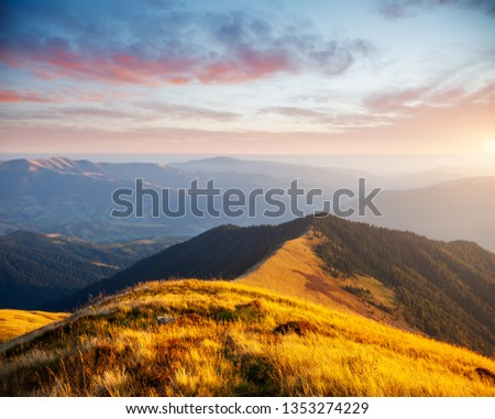A great view of the hills glowing by sunlight at twilight. Location place Carpathian mountains, Ukraine, Europe. An attractive summer scene. Fresh seasonal background. Discover the beauty of earth. #1353274229