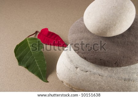 A green and a red leafs with 3 balancing pebbles
