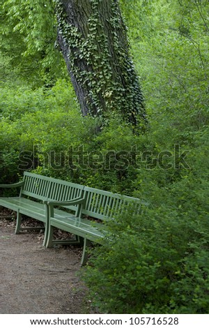 A green bench camouflage on a pathway in a forest of trees.
