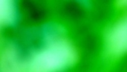A Green Blurry Blob Abstract Background