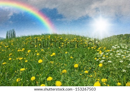 a green meadow with dandelion and april weather with sun, rain and a rainbow in the sky
