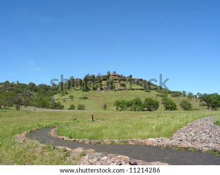 A green rolling hill in Chico's Bidwell park in northern California amid lush spring growth.