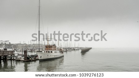 A grey and foggy day in San Francisco #1039276123