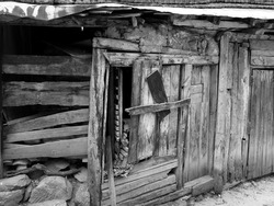 A greyscale shot of an old abandoned wooden hut - concept: mysterious, scary