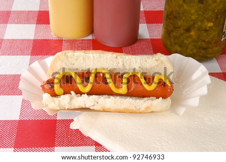 A grilled hot dog on a picnic table with condiments