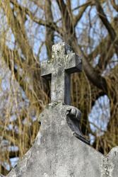 A gritty, grey stone cross in a graveyard. The cross is plain with no marking and there is a small amount of moss on it. The crucifix is shot against a tree background.