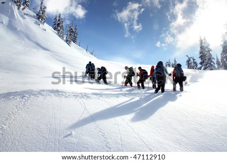 A group hikers are snowshoeing on snow mountain in BC, Canada.