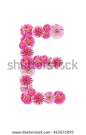 Royalty free beautiful pink zinnia flower put 460892893 stock photo - Putting together stylish kitchen abcs ...