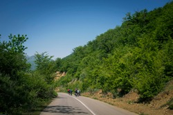 A group of cyclist ride bike in the jungle road, North of Iran. jungle view.
