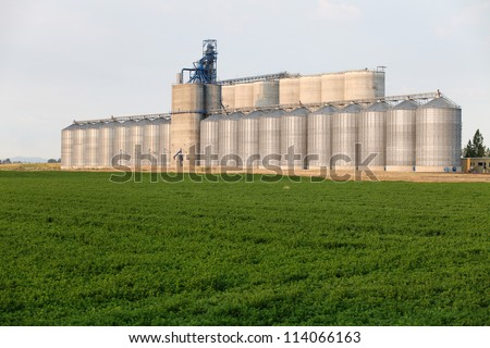 A group of granaries for storing wheat and other cereal grains.  It is located next to a railroad siding for easy loading and unloading.