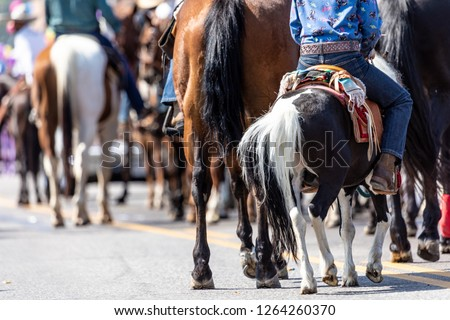 a group of horseback riders travel down a closed street during a parade #1264260370