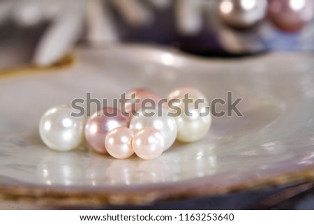 a group of pearl on the shell have some different color and size showing in jewelry store