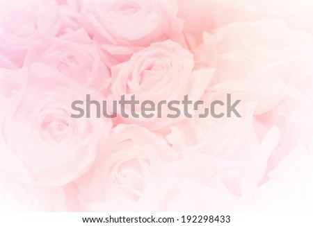 a group of rose, in soft style for background #192298433