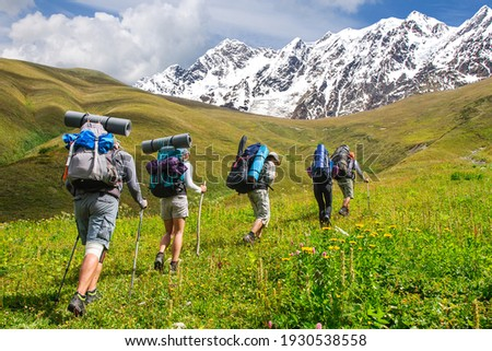 A group of tourists with large backpacks climbs the grassy slope overlooking the snow-capped peaks in the Caucasus Mountains Georgia Svaneti