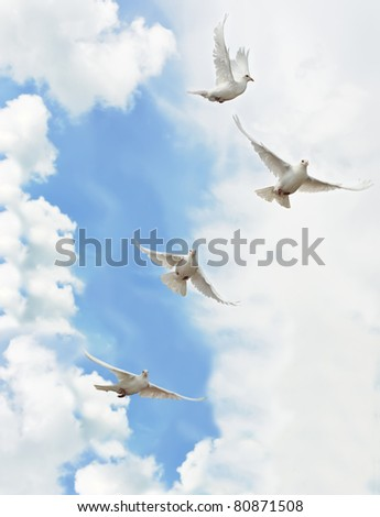 A group of white doves flying in the sky