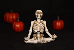 A halloween skeleton sitting and behind him three pumpkins