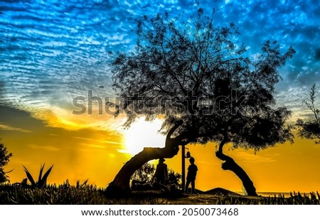 A halt at a tree at sunset. Rest stop at sunset. Halt at sunset. Halt sunset silhouettes