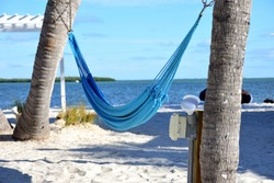 A hammock hung between two tree trunks with ocean in background