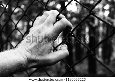 A hand and a fence that symbolizes captivity and a desire for freedom #1120033223