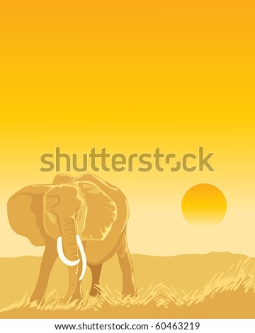 a hand drawn illustration of an african elephant on the dusty plains at sunset