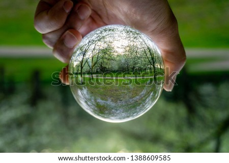 A hand holding a crystal ball for optical illusion. Sakura background. Known as an orbuculum, is a crystal or glass ball and common fortune telling object. Performance of clairvoyance and scrying #1388609585